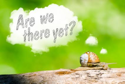 Long Distance Movine - Are we There yet? Snail